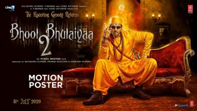 Photo of Bhool Bhulaiyaa 2 Movie : Story, Cast, Release, Album Details