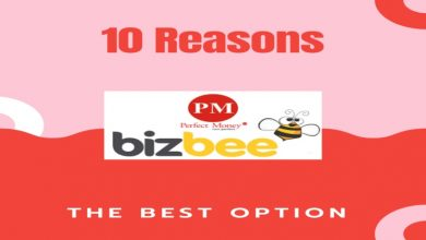 Photo of 10 reasons why PMbizbee Affiliate program is the best option on the Internet