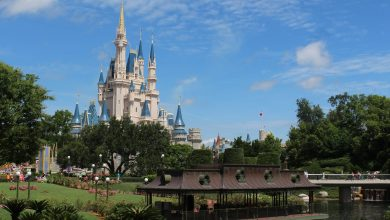 Photo of 7 Unexpected DVC Perks