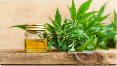 Photo of How CBd Oil Acts as a Pain Reprieve?