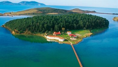 Photo of Adriatic Coast-Unique sandy shores with pine forests and luxury hotels